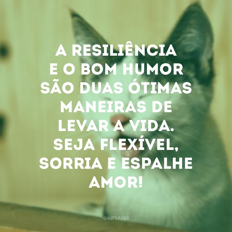 A resiliência e o bom humor são duas ótimas maneiras de levar a vida. Seja flexível, sorria e espalhe amor!
