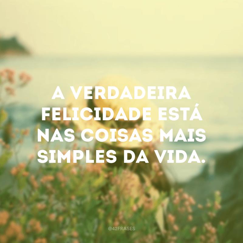 A verdadeira felicidade está nas coisas mais simples da vida.