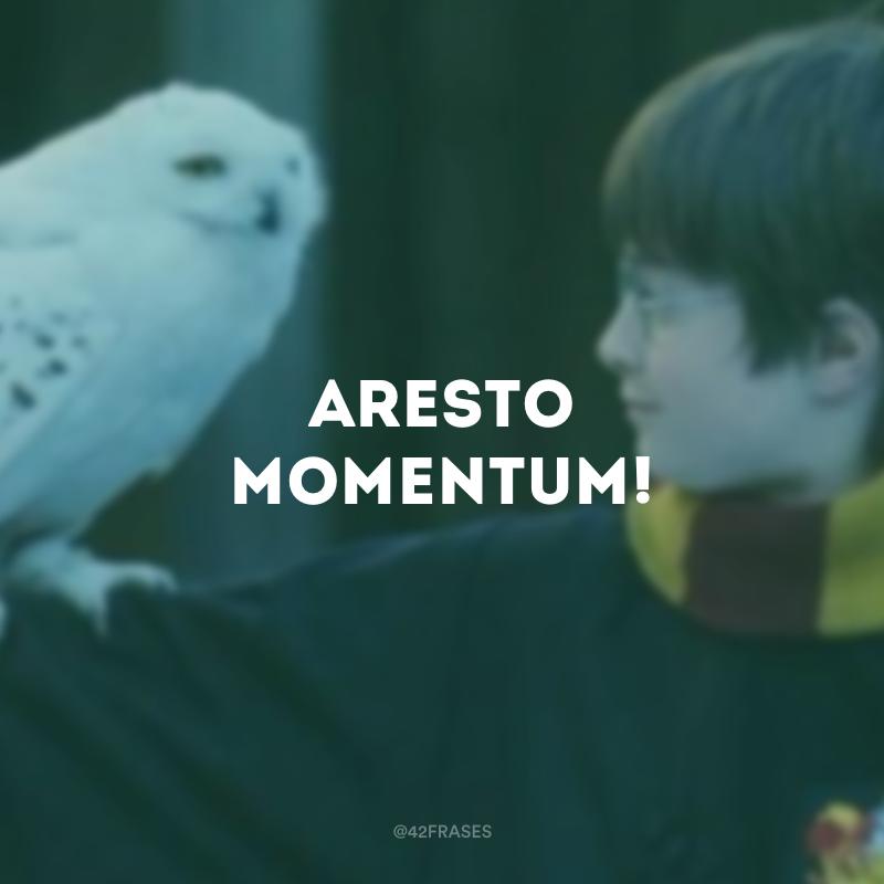 Aresto Momentum!