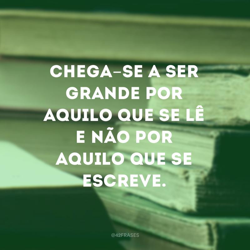 Chega-se a ser grande por aquilo que se lê e não por aquilo que se escreve.