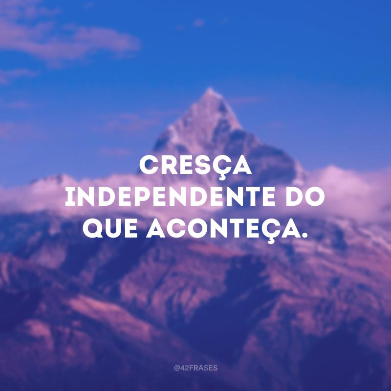 Cresça independente do que aconteça.