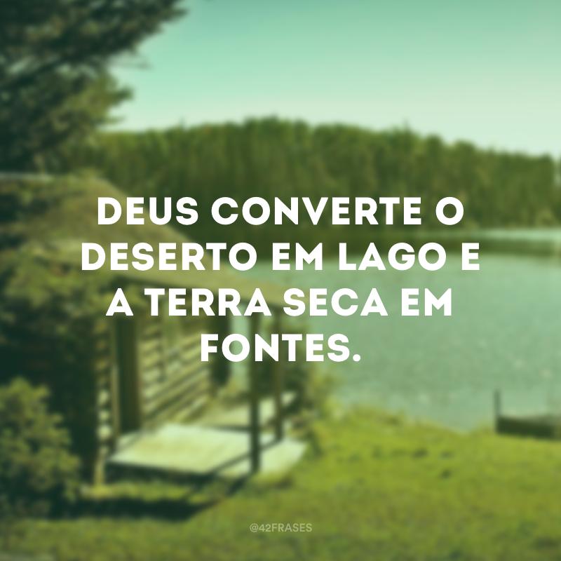 Deus converte o deserto em lago e a terra seca em fontes.