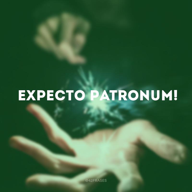 50 Frases De Harry Potter Para Relembrar O Sucesso Imortal