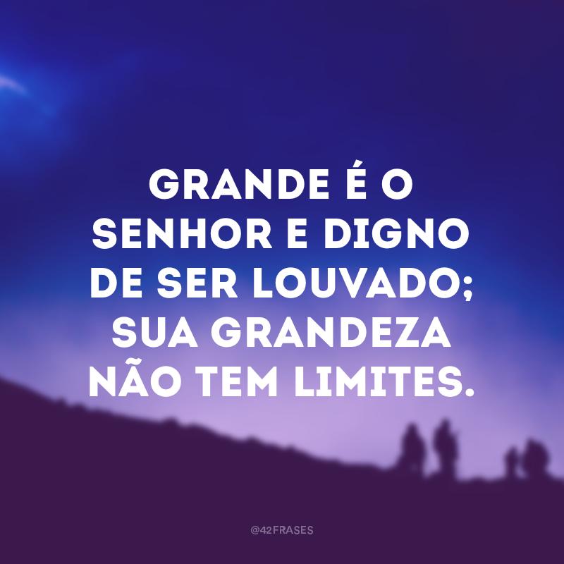 Grande é o Senhor e digno de ser louvado; sua grandeza não tem limites.