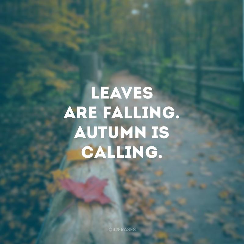 Leaves are falling. Autumn is calling. (As folhas estão caindo. O outono está chegando.)