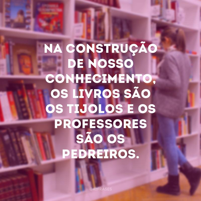 Na construção de nosso conhecimento, os livros são os tijolos e os professores são os pedreiros.