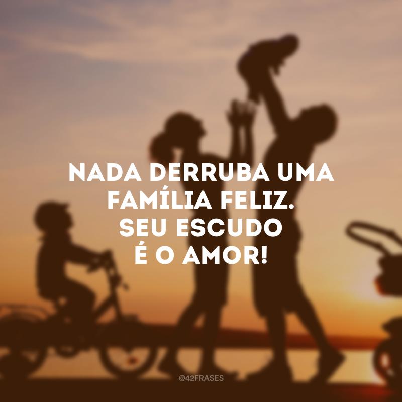 40 Frases De Família Feliz Para Agradecer Pelos Momentos Que