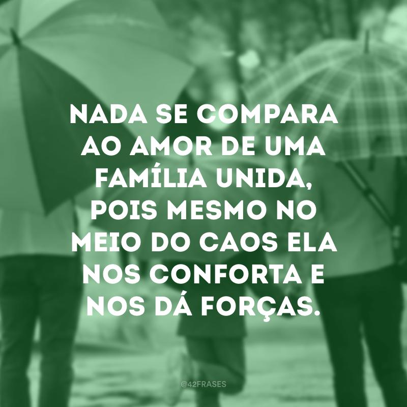 Nada se compara ao amor de uma família unida, pois mesmo no meio do caos ela nos conforta e nos dá forças.