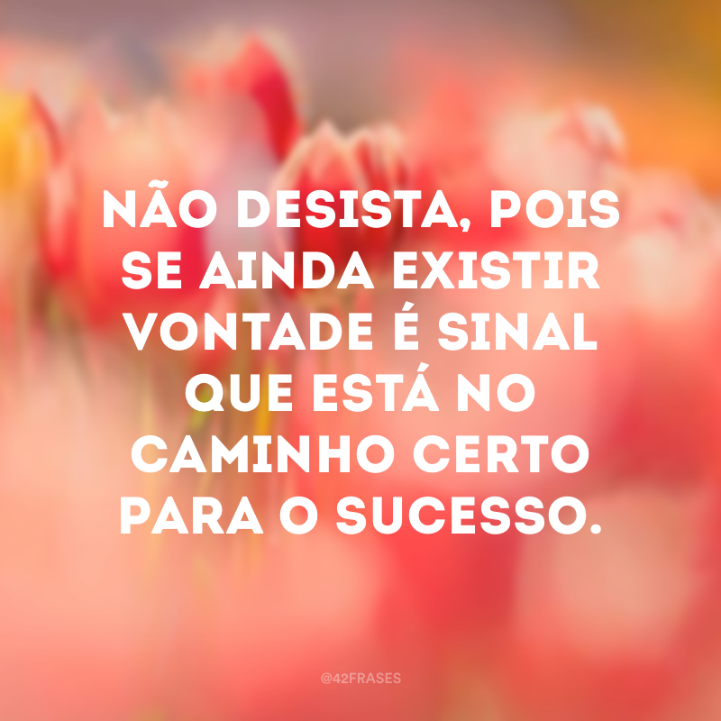 Não desista, pois se ainda existir vontade é sinal que está no caminho certo para o sucesso.