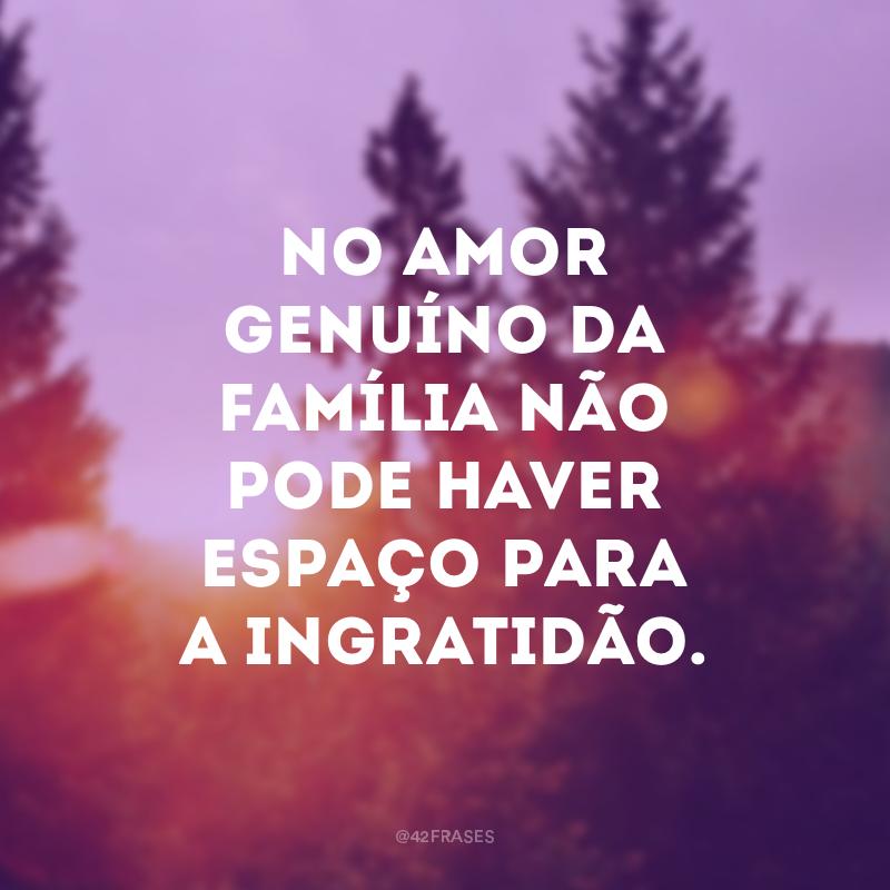 No amor genuíno da família não pode haver espaço para a ingratidão.