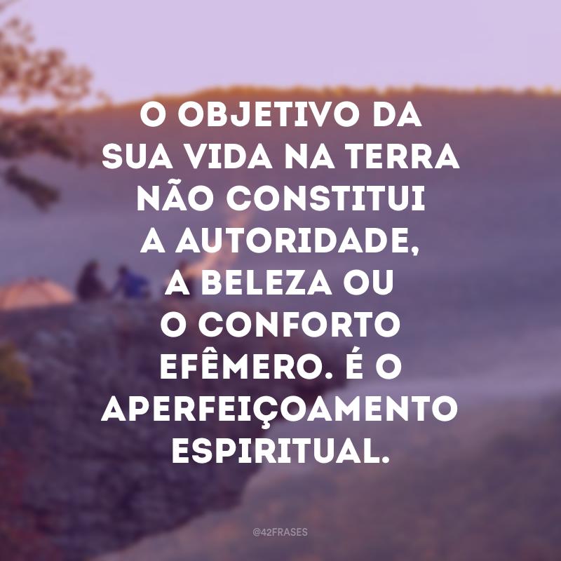 O objetivo da sua vida na Terra não constitui a autoridade, a beleza ou o conforto efêmero. É o aperfeiçoamento espiritual.