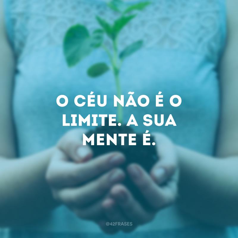 O céu não é o limite. A sua mente é.