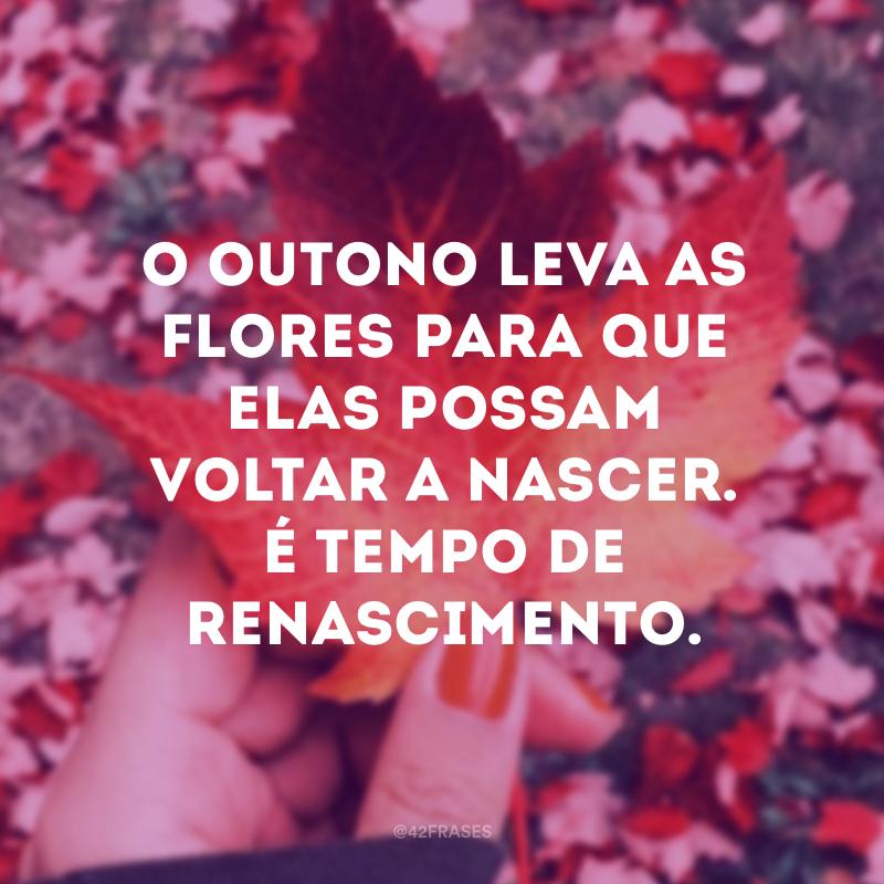 O outono leva as flores para que elas possam voltar a nascer. É tempo de renascimento.