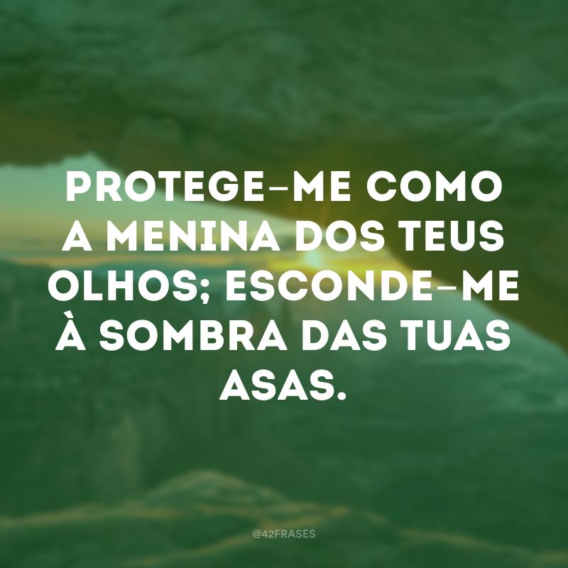 Protege-me como a menina dos teus olhos; esconde-me à sombra das tuas asas.