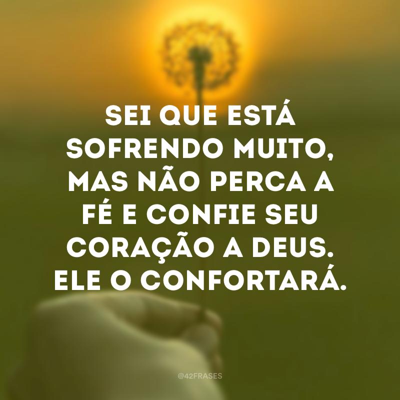 Sei que está sofrendo muito, mas não perca a fé e confie seu coração a Deus. Ele o confortará.