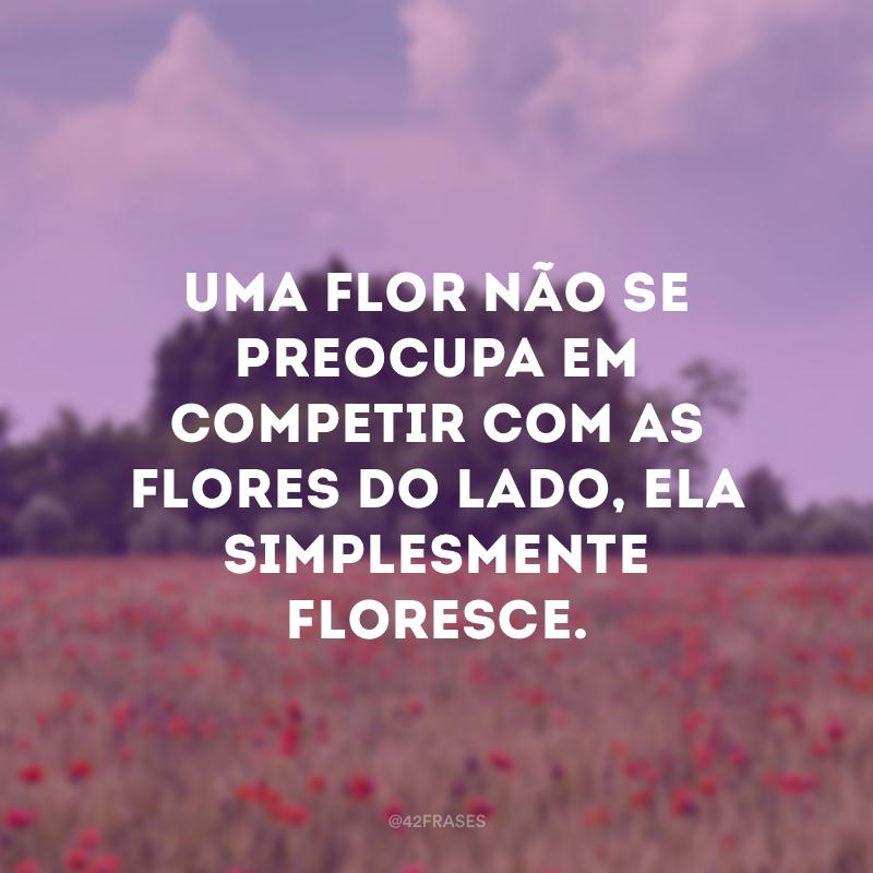 Uma flor não se preocupa em competir com as flores do lado, ela simplesmente floresce.