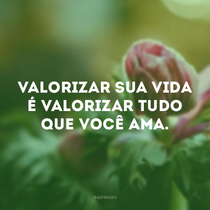 Valorizar sua vida é valorizar tudo que você ama.