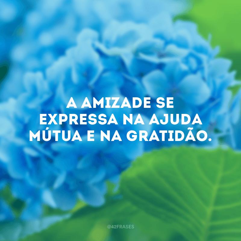 A amizade se expressa na ajuda mútua e na gratidão.