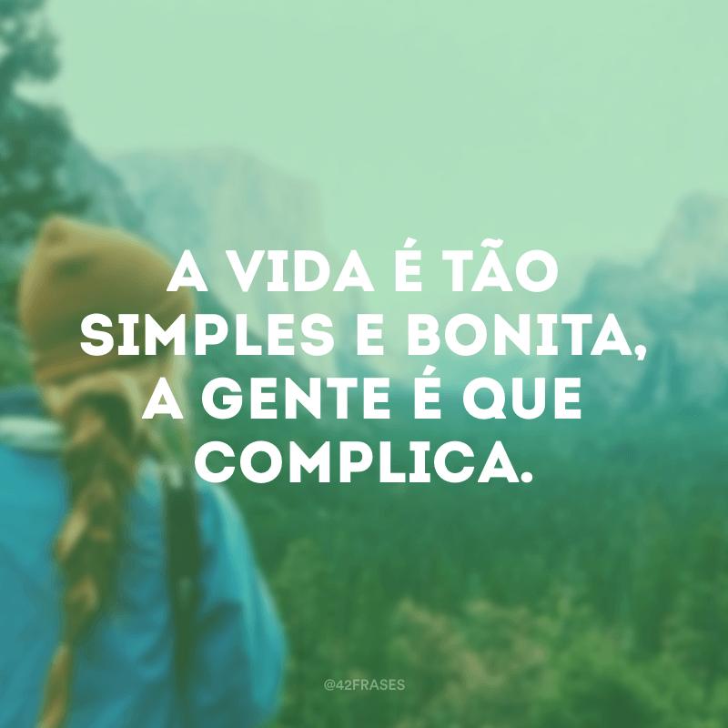 A vida é tão simples e bonita, a gente é que complica.