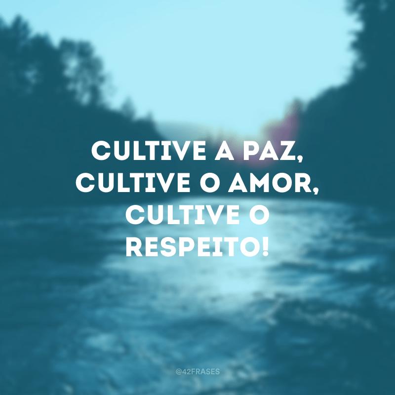 Cultive a paz, cultive o amor, cultive o respeito!