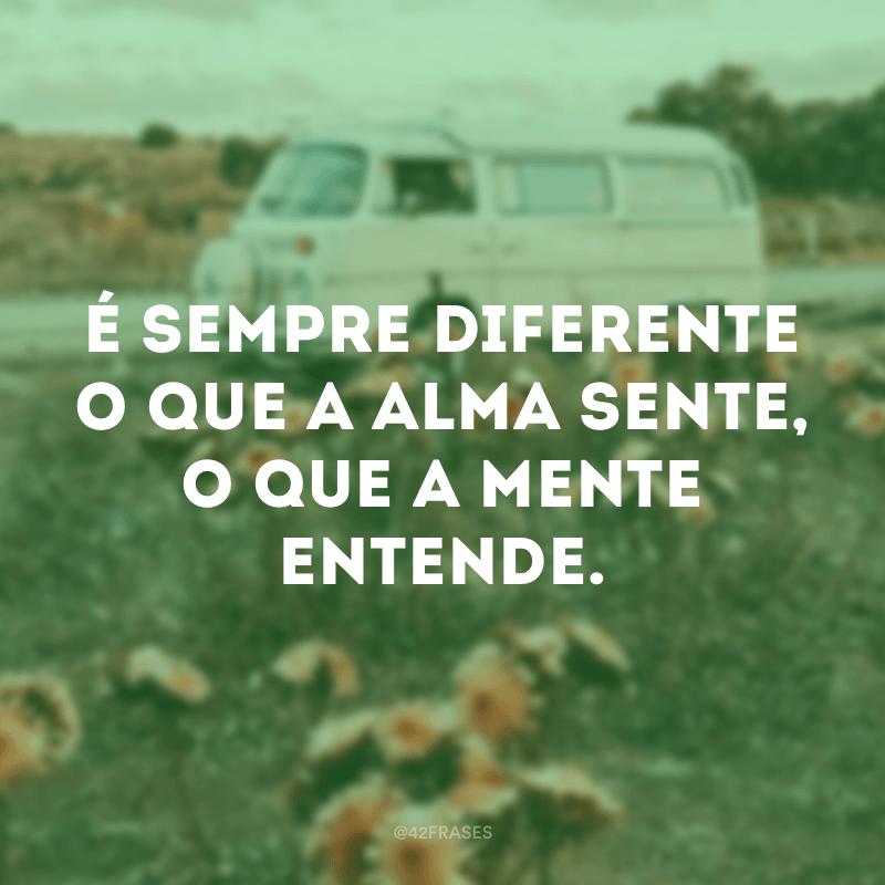 É sempre diferente o que a alma sente, o que a mente entende.