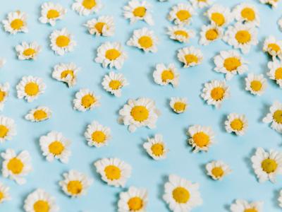 40 frases poéticas para deixar seu dia um pouco mais inspirador