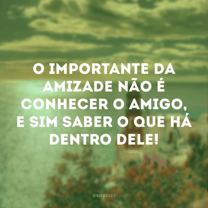 O importante da amizade não é conhecer o amigo, e sim saber o que há dentro dele!