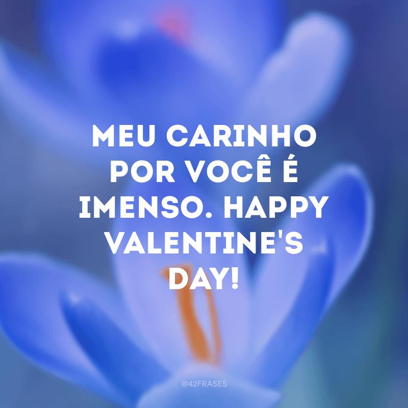 Meu carinho por você é imenso. Happy Valentine's day!