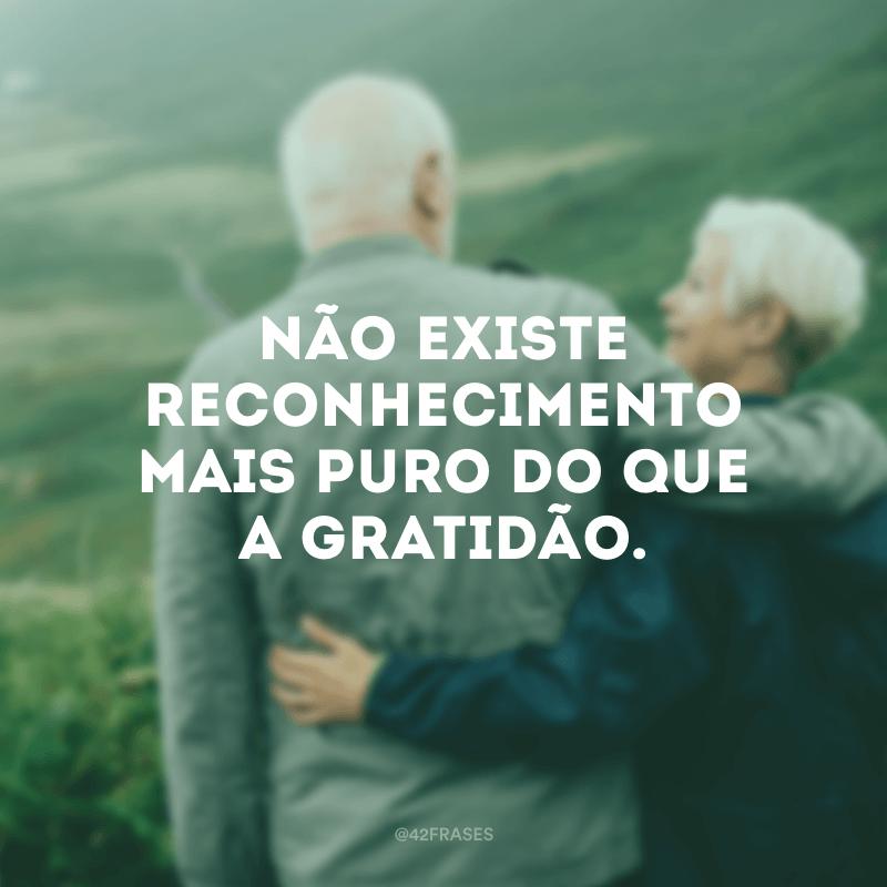 Não existe reconhecimento mais puro do que a gratidão.