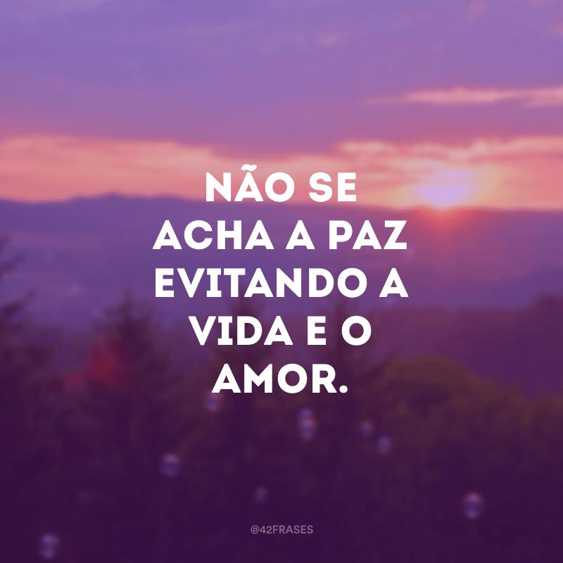 Não se acha a paz evitando a vida e o amor.