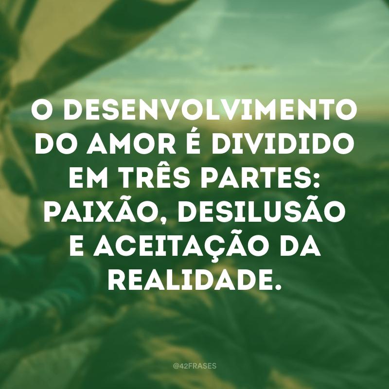 O desenvolvimento do amor é dividido em três partes: paixão, desilusão e aceitação da realidade.