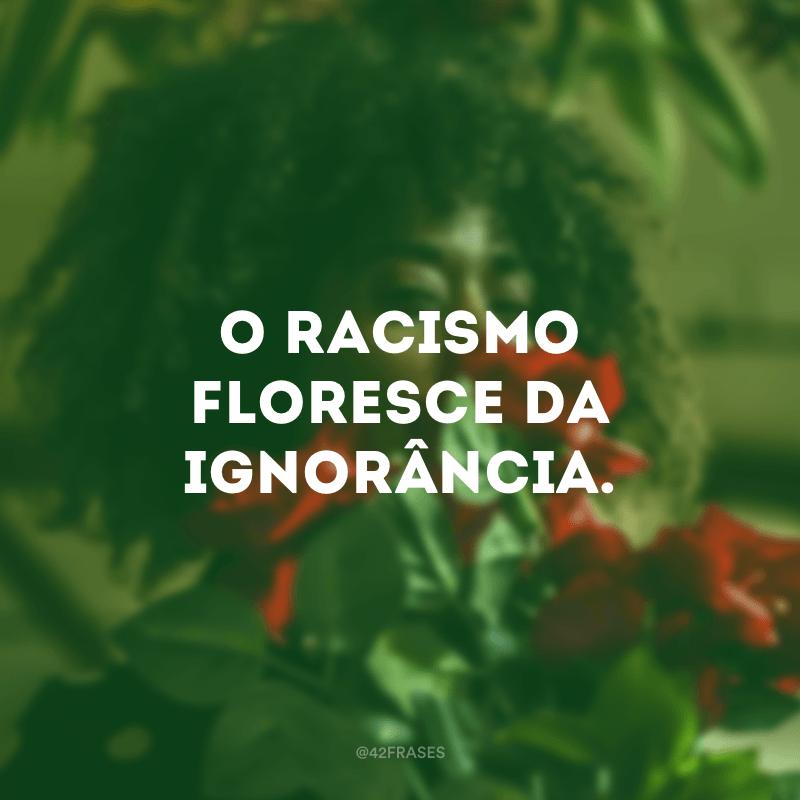 O racismo floresce da ignorância.