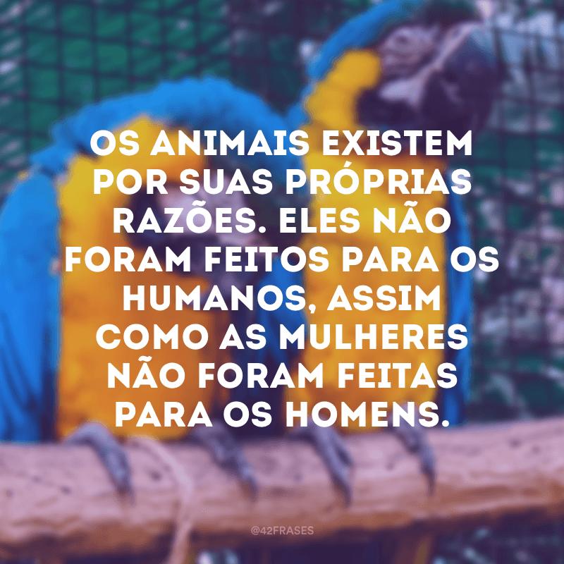 Os animais existem por suas próprias razões. Eles não foram feitos para os humanos, assim como as mulheres não foram feitas para os homens.
