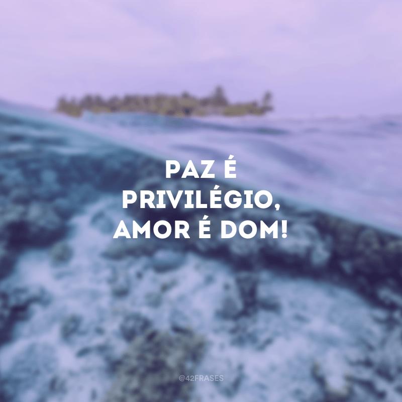 Paz é privilégio, amor é dom!