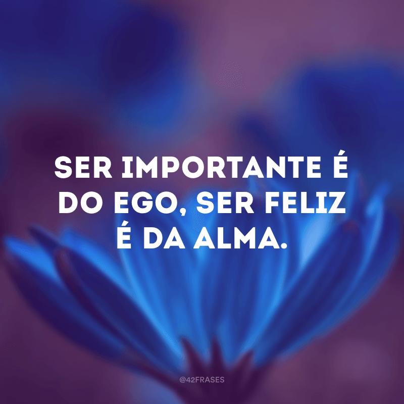 Ser importante é do ego, ser feliz é da alma.