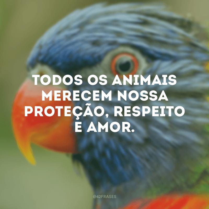 Todos os animais merecem nossa proteção, respeito e amor.