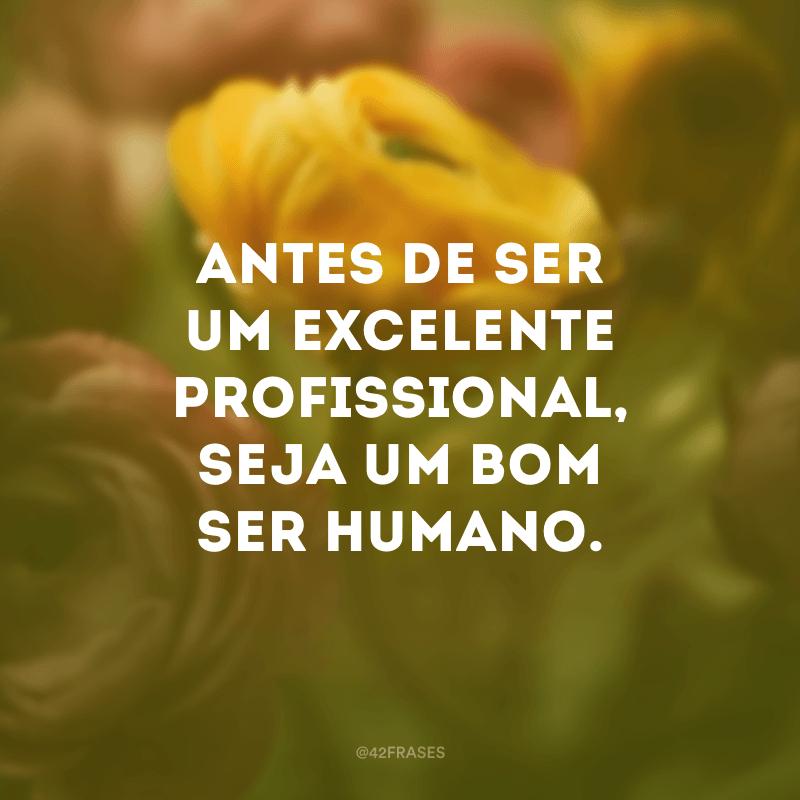 Antes de ser um excelente profissional, seja um bom ser humano.