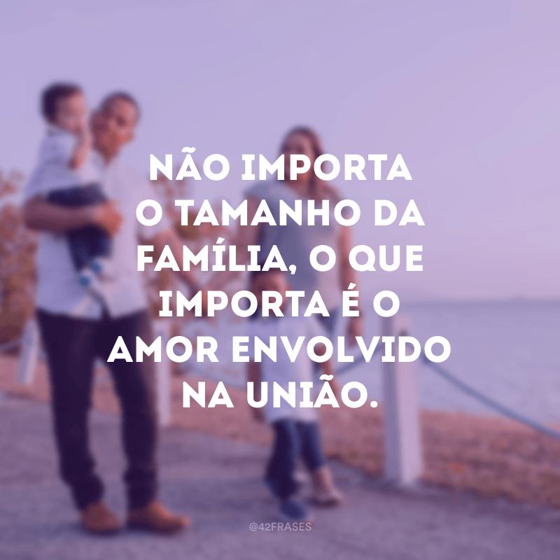 Não importa o tamanho da família, o que importa é o amor envolvido na união.