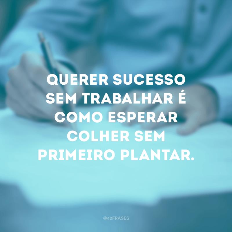 Querer sucesso sem trabalhar é como esperar colher sem primeiro plantar.