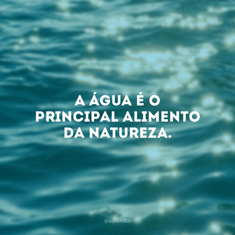 A água é o principal alimento da natureza.