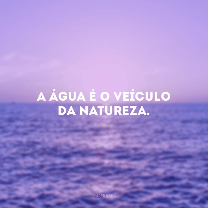 A água é o veículo da natureza.