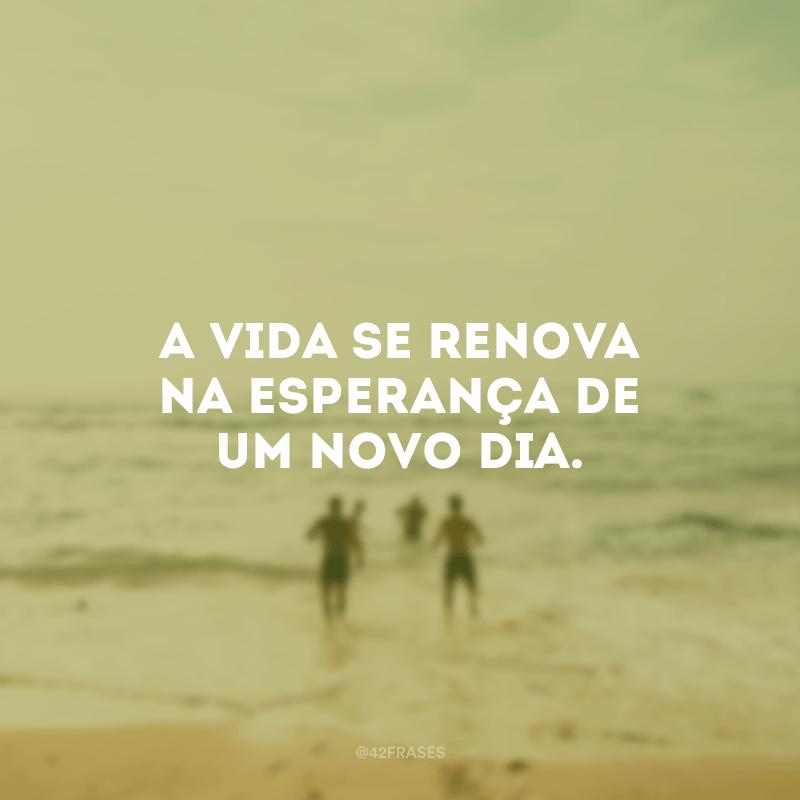 A vida se renova na esperança de um novo dia.