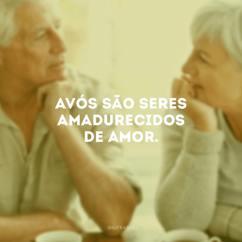 Avós são seres amadurecidos de amor.