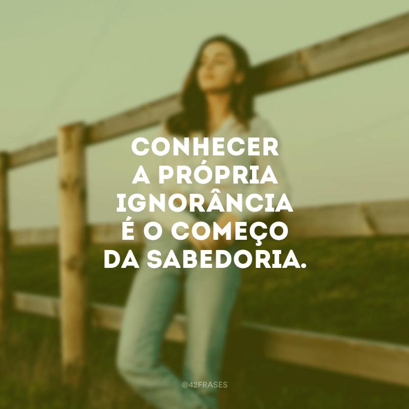 Conhecer a própria ignorância é o começo da sabedoria.