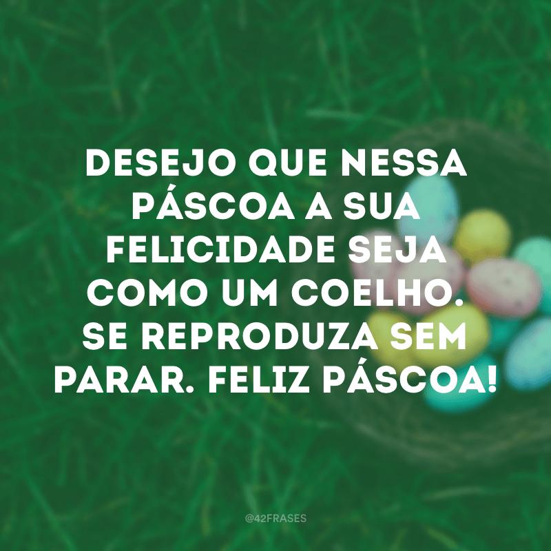 Desejo que nessa Páscoa a sua felicidade seja como um coelho. Se reproduza sem parar. Feliz Páscoa!