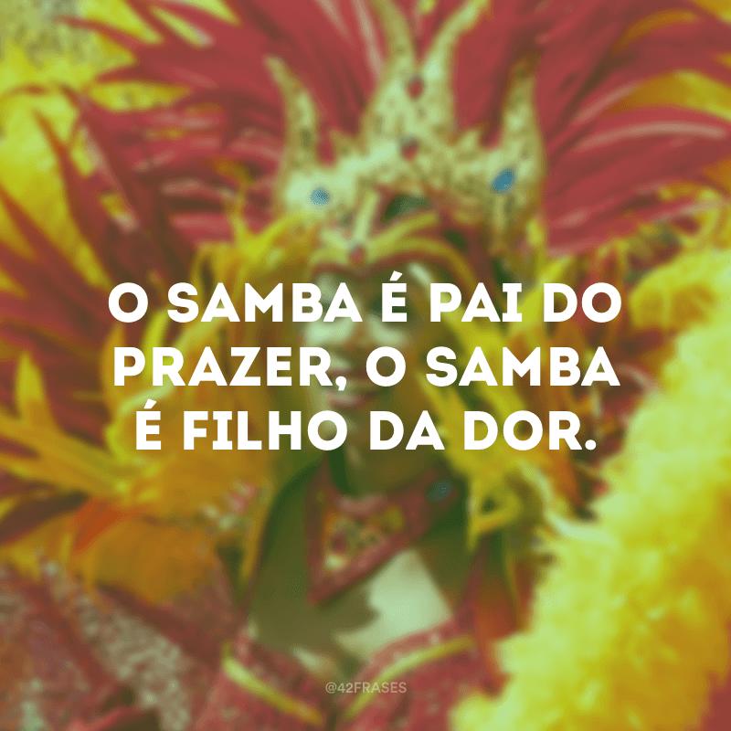 O samba é pai do prazer, o samba é filho da dor.