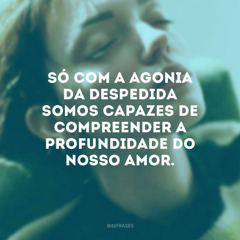 Só com a agonia da despedida somos capazes de compreender a profundidade do nosso amor.