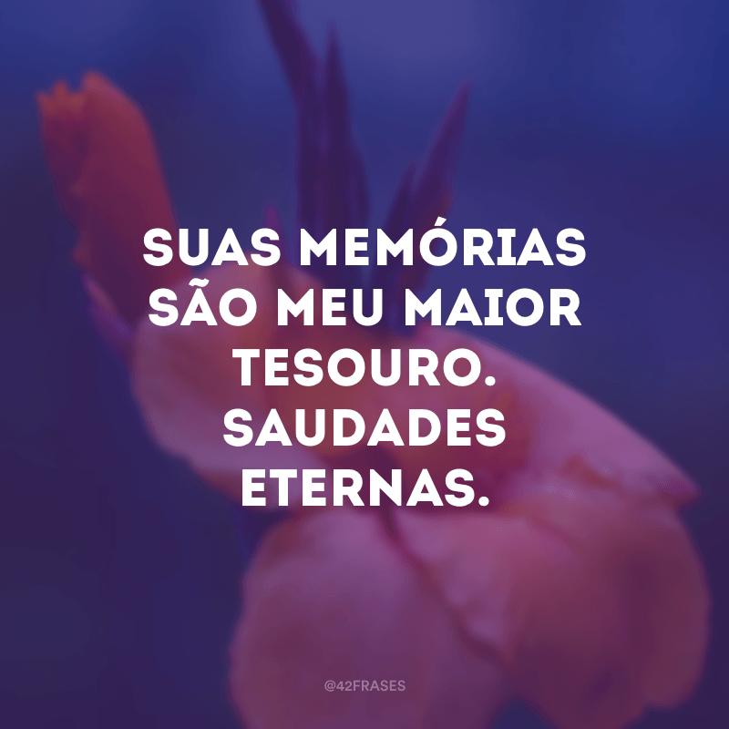 Suas memórias são meu maior tesouro. Saudades eternas.