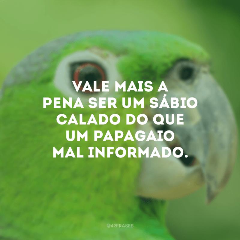 Vale mais a pena ser um sábio calado do que um papagaio mal informado.