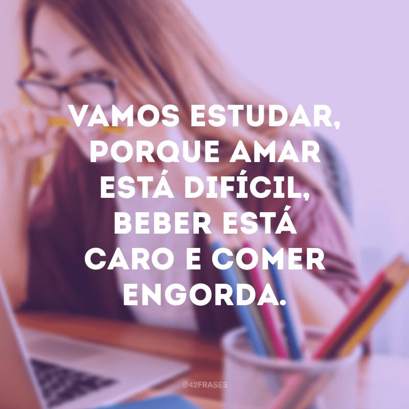 Vamos estudar, porque amar está difícil, beber está caro e comer engorda.